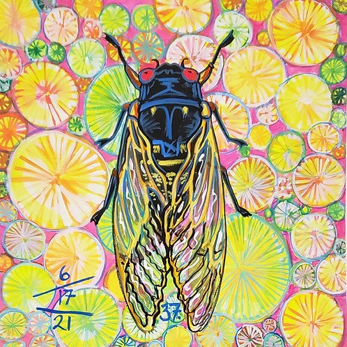 Cicada no. 37, Print