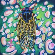 Cicada no. 33