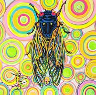 Cicada no. 32