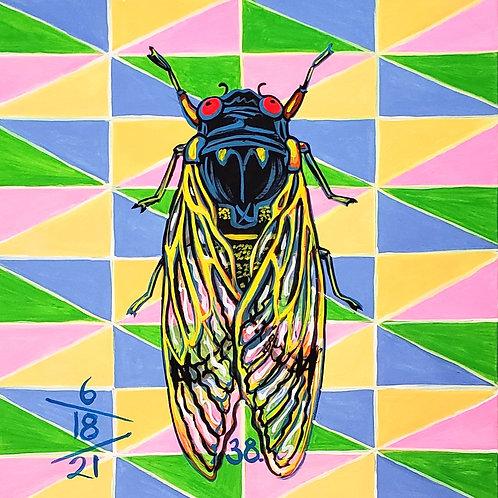 Cicada no. 38, Print