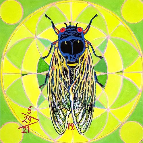 Cicada no. 19, Painting