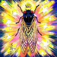 Cicada no. 14