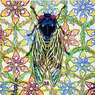 Cicada no. 28