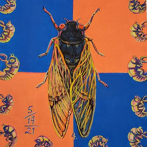 Cicada no. 4, Print