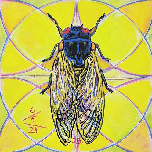 Cicada no. 25, Print