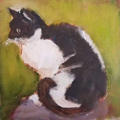 Black and white cat animal pal print 4x4inches