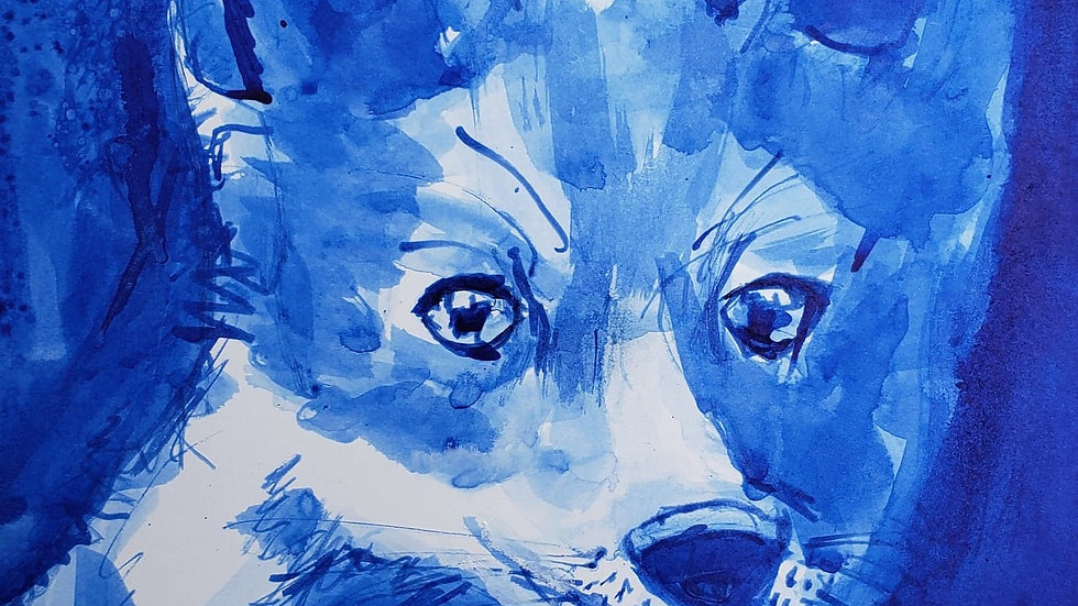 Baby Fox in Blue Ink (Sunday Art, 10-18-20)