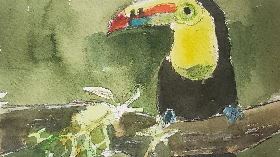 Toucan - watercolor - class demo on 11-24-20