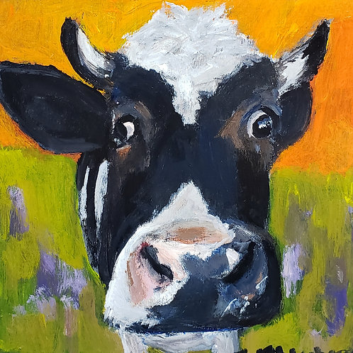 Silly cow animal pal print 4x4inches
