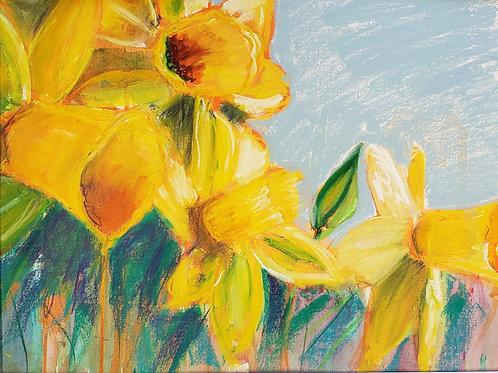 """Daffodil Closeup - 17x21.5"""""""