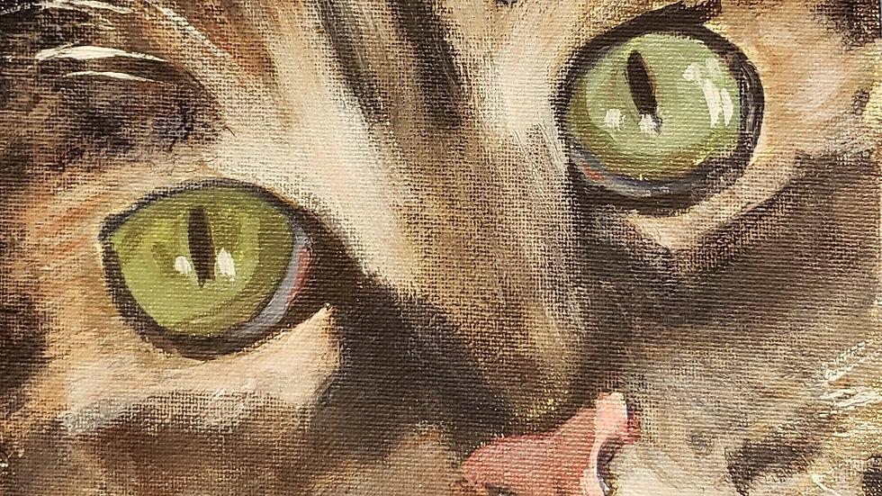 Kitty Closeup - acrylicpainting class 3-3-21