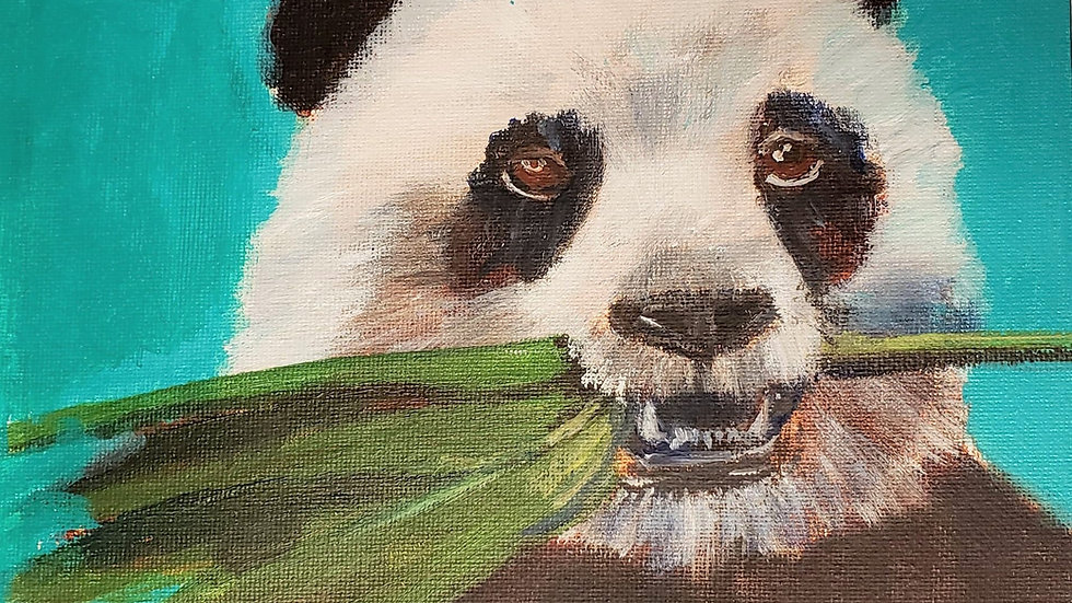 Panda Bear - acrylic painting demo 3-20-21