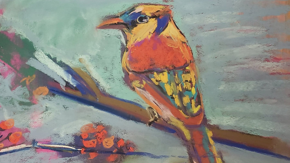 Colorful bird - pastels - class demo on 11-22-20