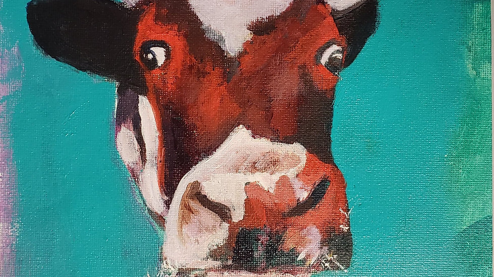 Cow in turquoise and red, lesson 2-24-221