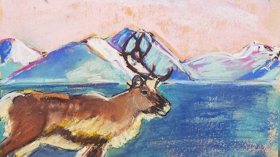 Reindeer- pastels - class demo on 12-11-20