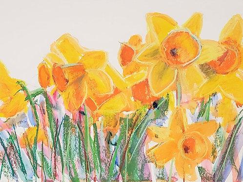 """Daffodil Field - 17x21.5"""""""