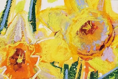 """Daffodils Mini - 6 x 8"""""""