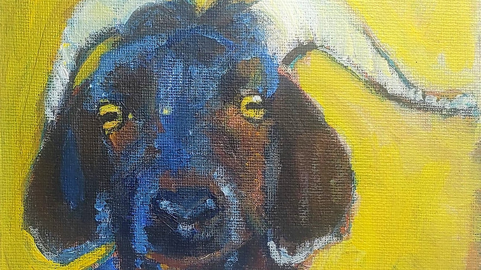 Horned goat - acrylic painting demo 3-21-21