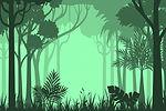 PC-ForestShadows.jpg