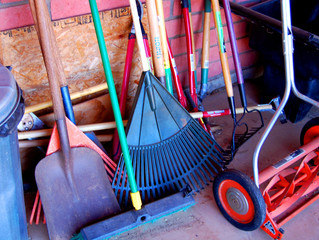 Tips from the Canadian Physiotherapy Association on how to keep your back healthy while raking the y