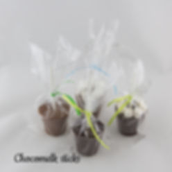 Choxomelk sticks.jpg