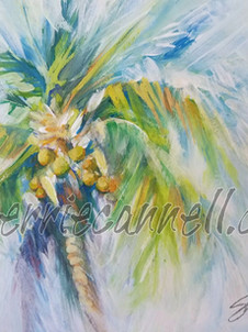 palm3. SOLD