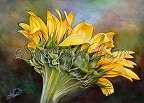 sunflower for etsy w.jpg