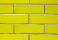 Kowhai Yellow.PNG