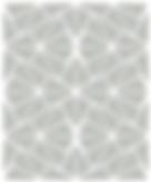 Patone Warm Grey 3.PNG