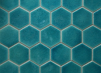 Turquoise Blue.PNG