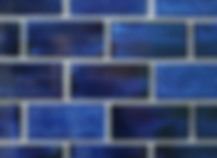 Blue Coral.PNG