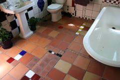 Bathroom Organic.jpg