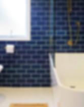 Blue Bathroom - _DesignHaus.PNG