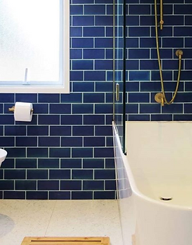 Blue Bathroom - _DesignHaus.PNG
