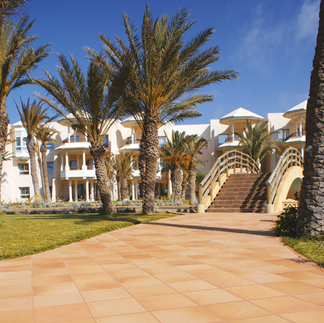 DUNA_gres_rustico_natural_klinker_hotel-