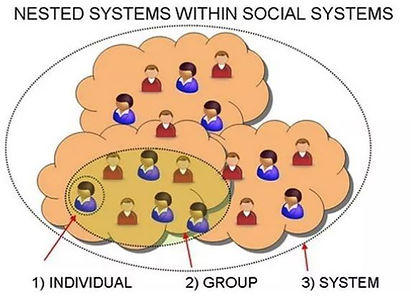 nested system.JPG