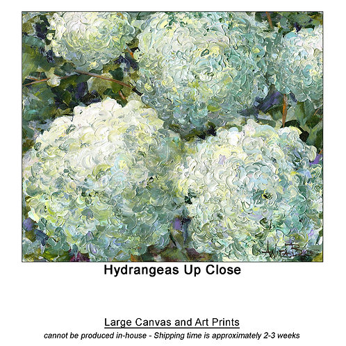 """Hydrangeas Up Close_large prints"""