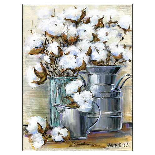 """Cotton Casual"""