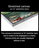 "This canvas is intended to be placed in a frame.  The painting does not wrap around the edges of the 3/4"" stretched canvas"