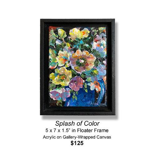 """""""Splash of Color"""""""