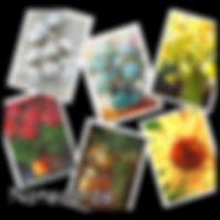 Notecards button.jpg
