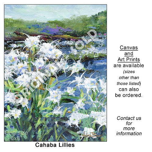 """Cahaba Lilies_Vertical - print"""