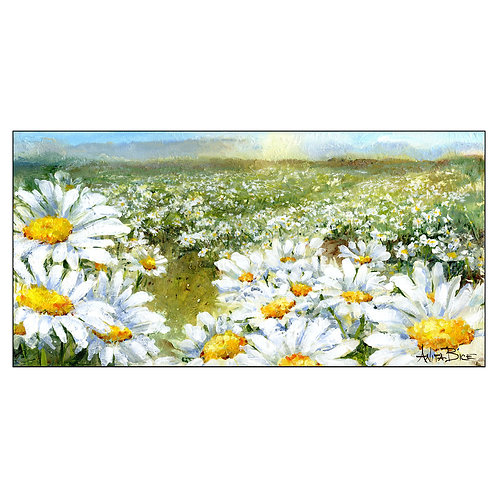 """""""Daisies Forever"""""""