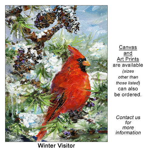 """Winter Visitor - print"""