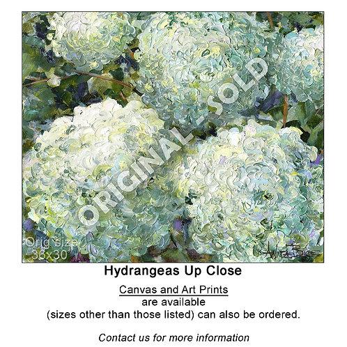 """""""Hydrangeas Up Close - print"""""""