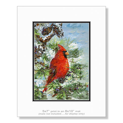 """Winter Visitor - small prints"""