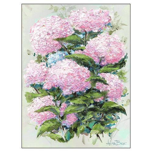 """Hydrangea Pink"""