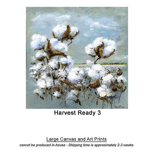 """Harvest Ready 3_large prints"""