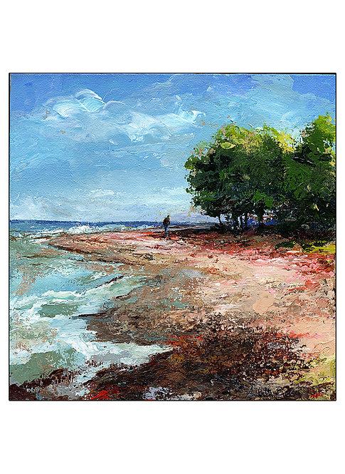 """Rocky Beach"""