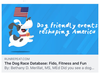 Fido, Fitness & Fun